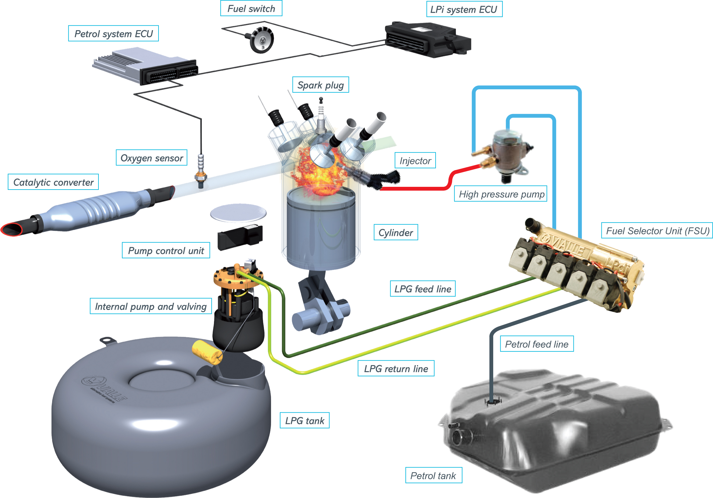 lpdischeme lpg wiring diagram efcaviation com lpg petrol switch wiring diagram at gsmportal.co